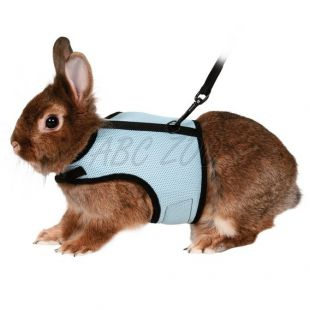 Vodítko a postroj pre zajace - suchý zips