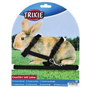 Postroj a vodítko pre zajace - plastové zapínanie, čierny