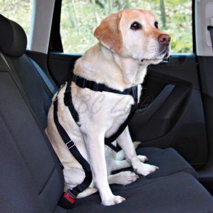 Postroj pre psa do auta, bezpečnostný - S, 30 - 60 cm