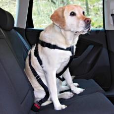 Postroj pre psa do auta, bezpečnostný - M, 50 - 70 cm