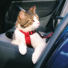 Postroj pre mačky do auta, bezpečnostný - 20 - 50 cm