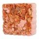 Vitamínový blok pre hlodavce - mrkva, s držiakom, 75g
