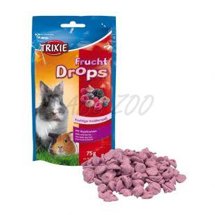 Pamlsky pre hlodavce -  ovocné dropsy, 75g