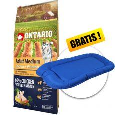 ONTARIO Adult Medium - chicken & potatoes 12kg + DARČEK