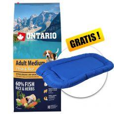 ONTARIO Adult Medium 7 Fish & Rice 12kg + DARČEK