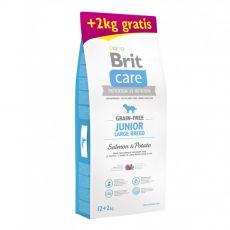 Brit Care Grain-free Junior Large Breed Salmon & Potato 12 kg + 2 kg GRATIS