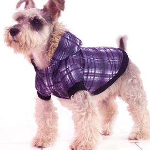 Bunda pre psa - károvaná, fialová, XS