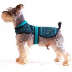 Vestička pre psíka - tyrkysovo-čierna, XL