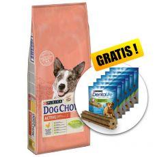 PURINA DOG CHOW Active 14kg + DARČEK