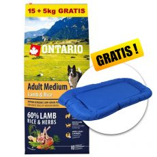 ONTARIO Adult Medium Lamb & Rice 15+5kg ZDARMA+ DARČEK