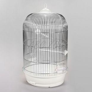 Klietka pre papagaja JULIA II chrom - 34 x 34 x 63 cm