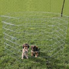 Voliera pre šteňatá a malých psov