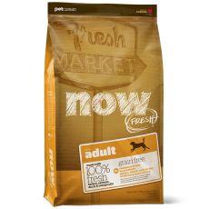 Petcurean NOW FRESH Grain Free ADULT - 11,1 kg - POŠKODENÝ OBAL