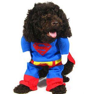 Karnevalové oblečenie pre psa SUPERMAN - M