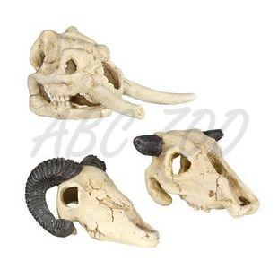 Ozdoba do akvária - Lebka zvieraťa