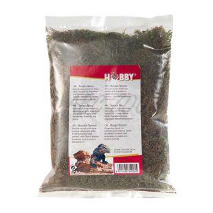 Sušený prírodný mach - Terrano natural moss