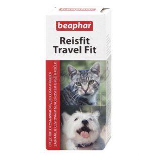 Tabletky proti cestovnej nevoľnosti psa