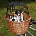 Košík na bicykel pre psa s mriežkou 44 x 48 x 33 cm