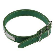 Kožený obojok pre psa - zelený, 45 cm