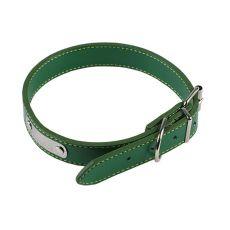 Kožený obojok pre psa - zelený, 30 cm