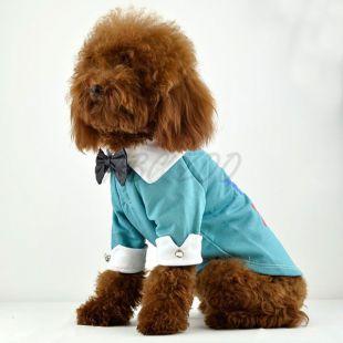 Tričko pre psov - modré s golierom a motýlikom, XL