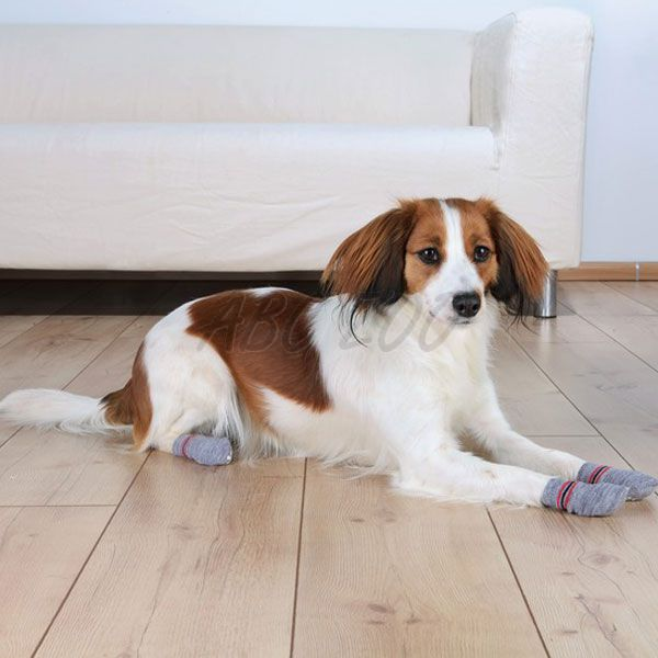 Ponožky pre psov - protišmykové 2ks 6b8b69c194e