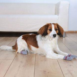 Ponožky pre psov - protišmykové 2ks, L - XL