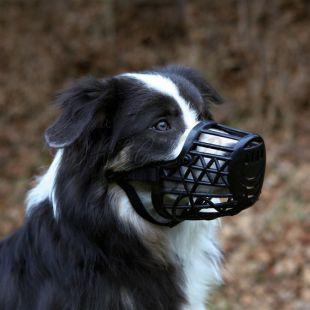 Náhubok pre psa, plastový - veľkosť M, 22 cm
