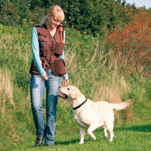 Vesta Dog activity, výcviková - hnedá, XL