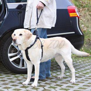 Vodidlo pre psa čiernej farby, krátke - 33cm