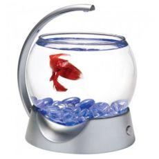 Akvárium pre Bettu, guľa 1,8L - sivé