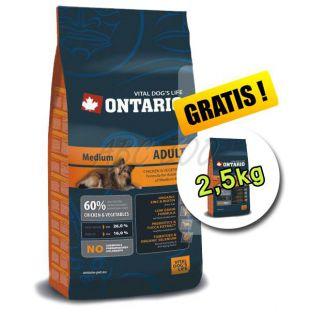 Ontario Adult Medium 13 kg + 2,5 kg GRATIS