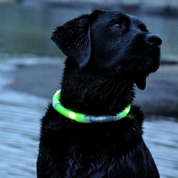 e6d56ebea2 LED obojok pre psy DOG FANTASY - oranžový
