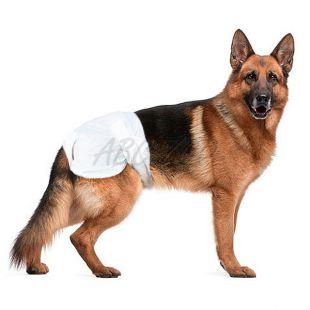 Plienky pre psov - 12 ks, veľkosť XL