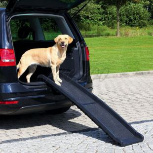 Plastová nakladacia rampa pre psov - 40 x 156 cm