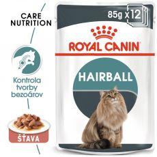Royal Canin HAIRBALL CARE - kapsička 85g