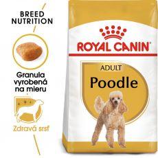 ROYAL CANIN Poodle Adult granule pre dospelého pudla 1,5 kg