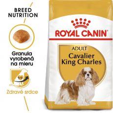 Royal Canin Cavalier King Charles Adult granule pre dospelého gavalieršpaniela 1,5 kg