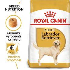 ROYAL CANIN Labrador Adult granule pre dospelého labradora  3 kg