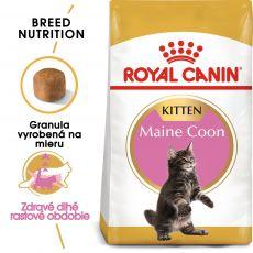ROYAL CANIN Maine Coon Kitten granuly pre mainské mývalie mačiatka 10 kg