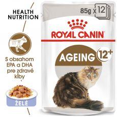 Royal Canin Ageing +12 Jelly kapsička pre staré mačky v želé 12 x 85 g